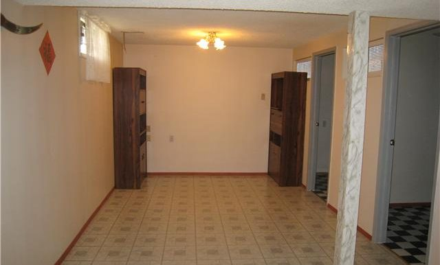 basement-bonus-room