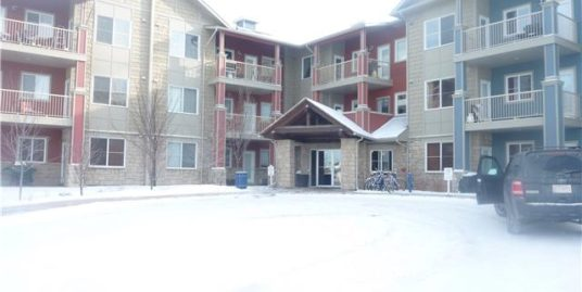 Fabulous 2 bedroom unit with maintenance free living in Airdrie!