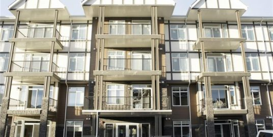 Few months old 2 bdrm apartment on 3rd floor of New Brighton!