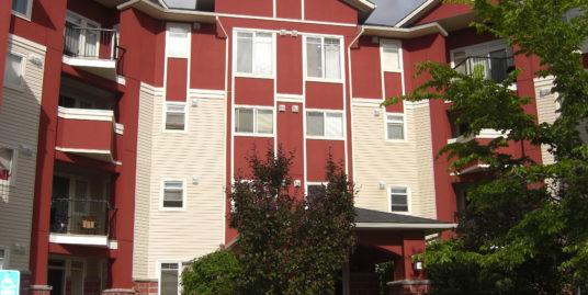 Cozy 2 bedroom suite in Country hills top floor corner suite!
