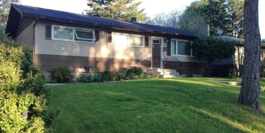 3 Bedrooms up, 2 room lower with double garage, Single home in Spruce Cliff!