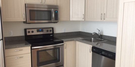 Only 1 year old 1 bdrm plus den apartment near U of C in Brentwood!