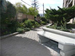 Yard/Garden.