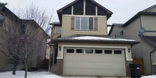 FULLY FINISHED 2-STOREY HOME WITH OVER 2200 SQ FT OF LIVING SPACE IN PANORAMA!