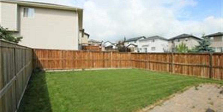 backyard-large