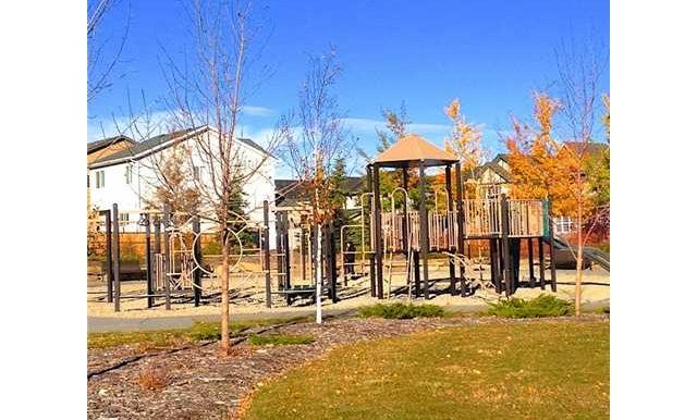 playground near by