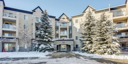 6000 Somervale Court SW Unit #117 – Purchased