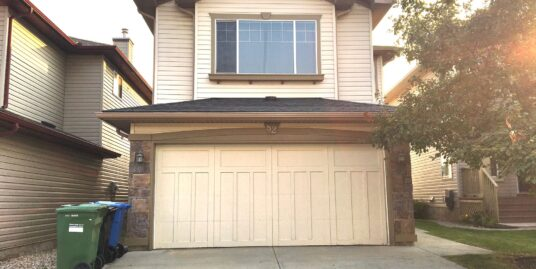 WELL KEPT,EXTREMELY BRIGHT & SUNNY 2 STORY HOME IN NEW BRIGHTON!