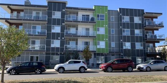 1 BDRM, LIKE NEW CONDO FOR RENT IN SETON